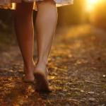 A Menina e os Blogs – Uma História